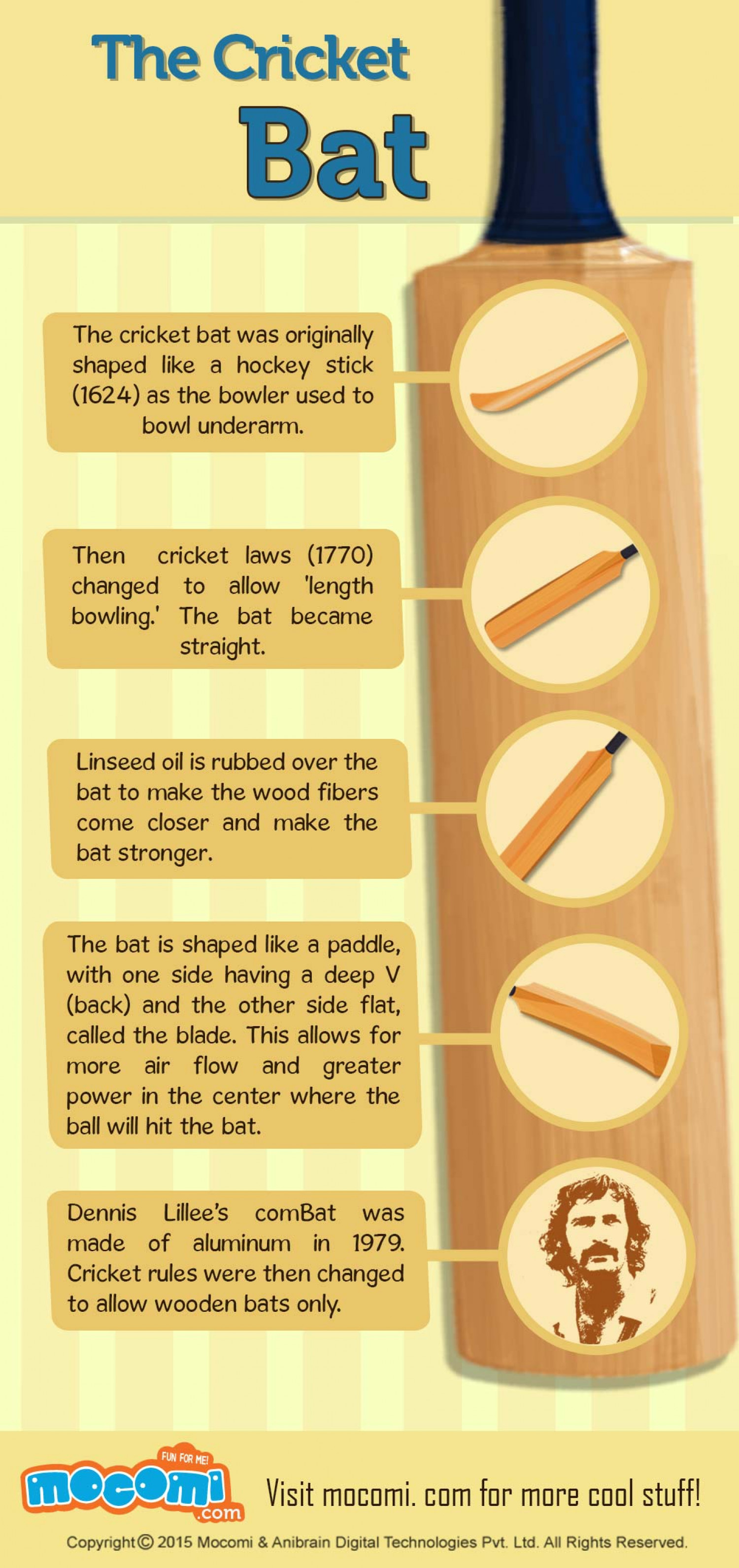 The Cricket Bat Facts Infographic