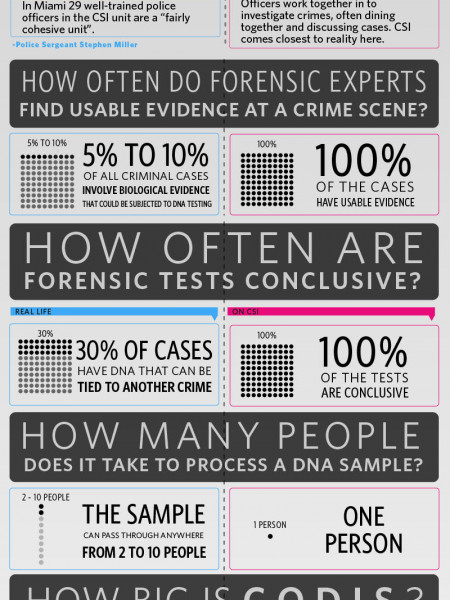 The CSI Effect: Fact vs. Fiction Infographic
