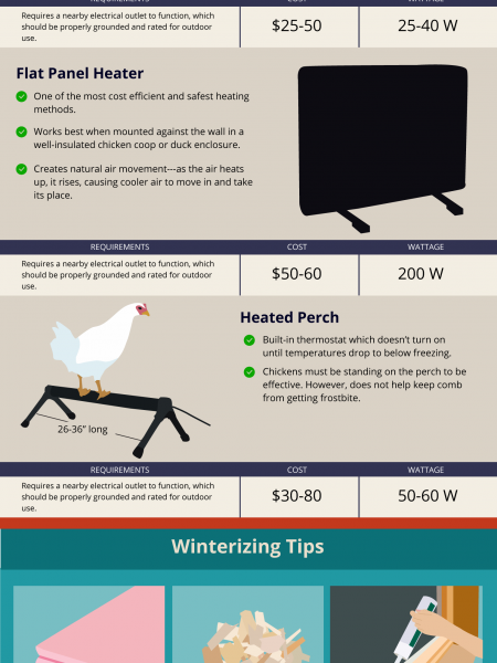 The Dangers of Heat Lamps in Chicken Coops Infographic