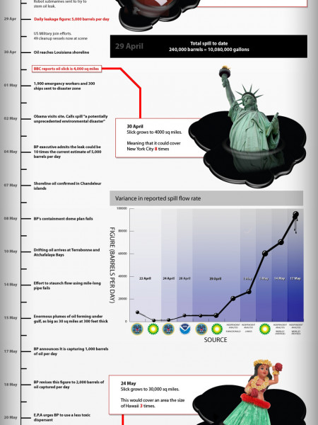 The Deepwater Horizon Oilspill  Infographic