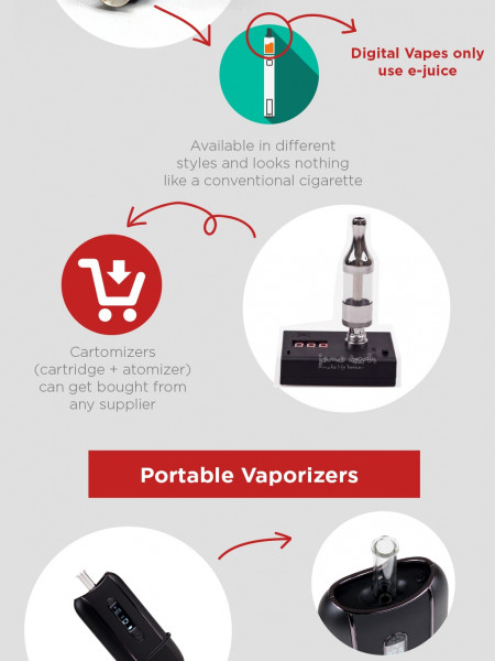 The Difference Between Vapes and Portable Vaporizers Infographic