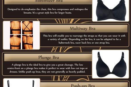 The Different Styles of Bras Infographic