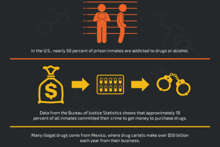 The Disastrous Effects of the Drug Trafficking Epidemic Infographic