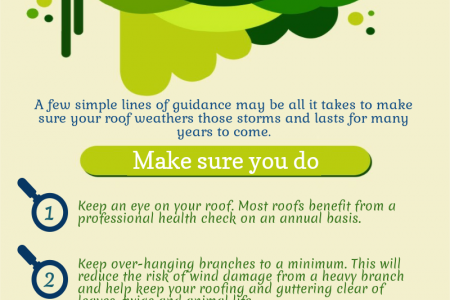 The Dos and Don'ts of Domestic Roof Care Infographic