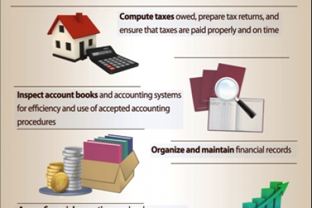 The Duties of an Accountant and Auditor  Infographic