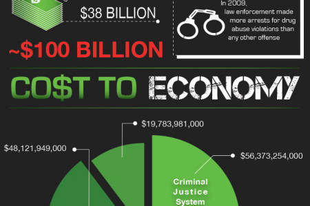The Economics of Drug Abuse Infographic