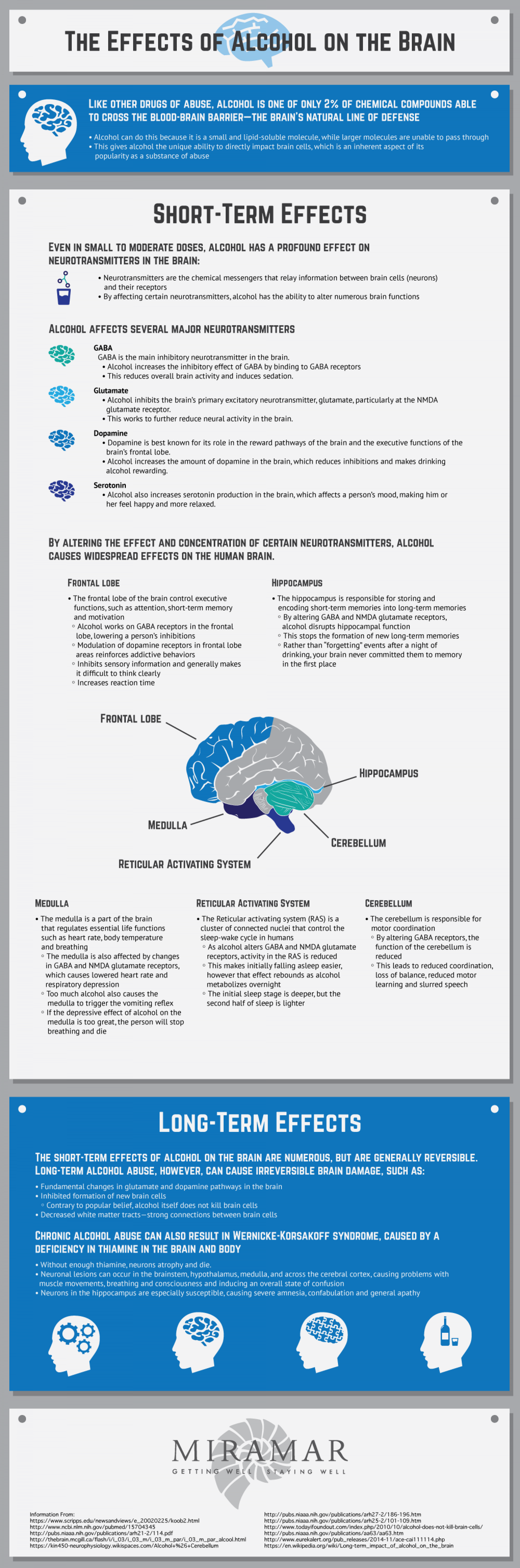 The Effects of Alcohol on the Brain Infographic