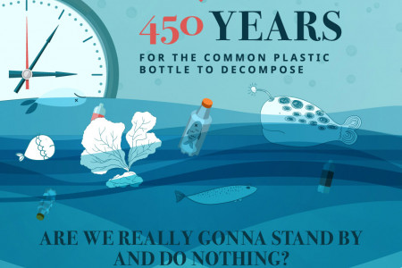 The Effects of Plastic Pollution in the Ocean Infographic