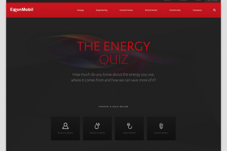 The Energy Quiz Infographic
