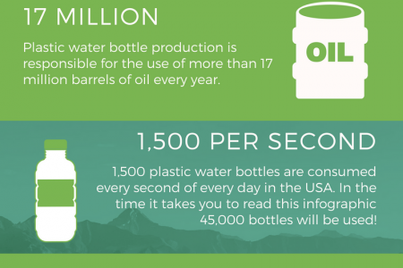 The Environmental Impact of Bottled Water Infographic