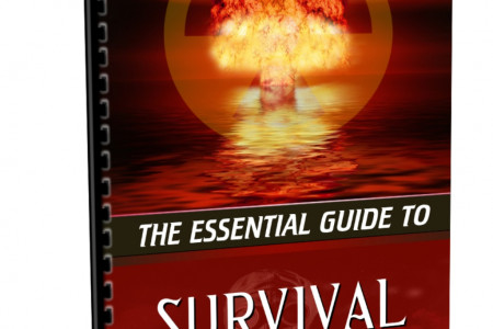 The Essential Guide To Survival Infographic