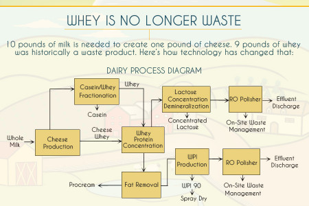 The Evolution of Dairy Processing Infographic