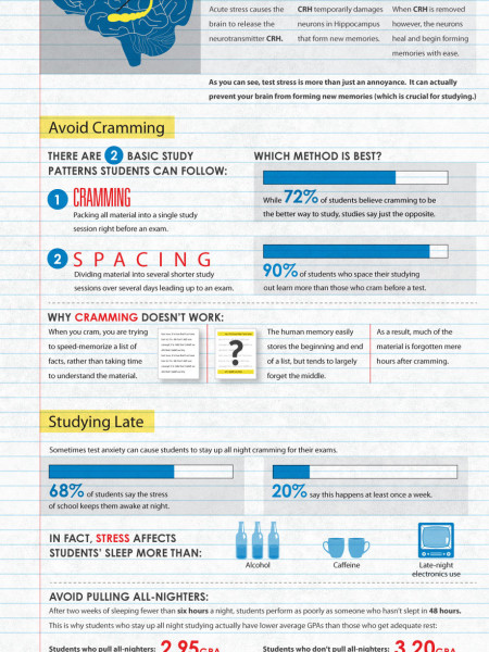 The Exam Cram Infographic