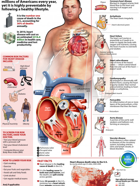 The Facts About Heart Disease Infographic