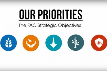 The FAO Strategic Objectives Infographic