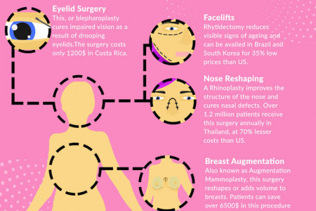 The Five Most Commonly Opted Cosmetic Surgeries In Medical Tourism Infographic
