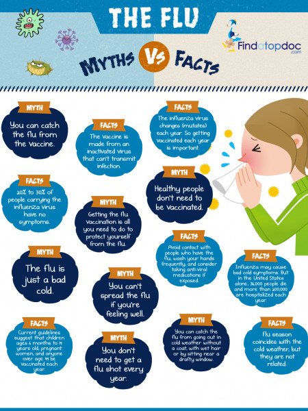 The Flu Myths Vs Facts Infographic