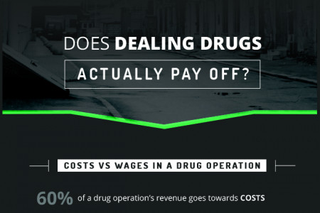The Freakonomics of Drug Dealing Infographic