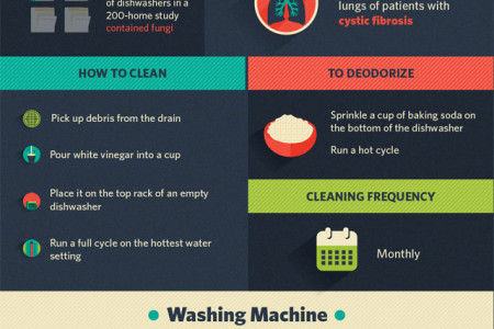 The Fungal Jungle: What's Growing in Your Appliances? Infographic