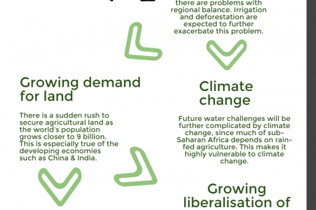 The future of agriculture in Africa Infographic