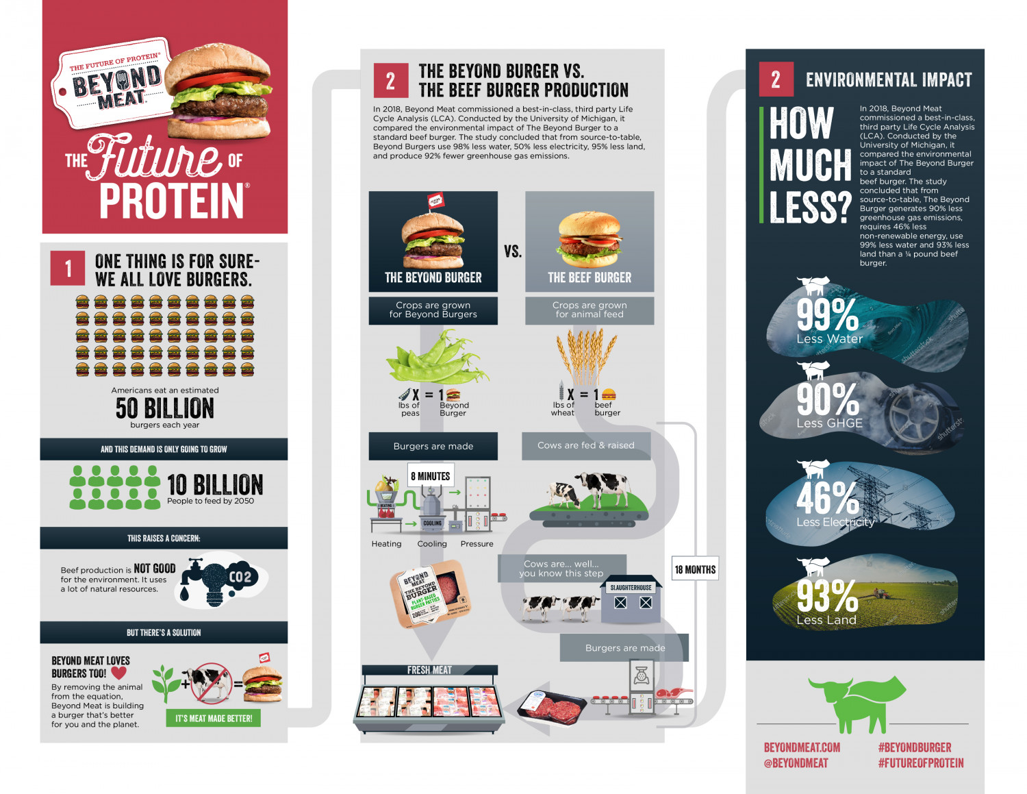 The Future of Protein Infographic