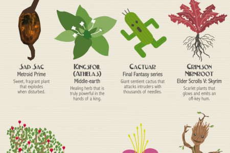 The Garden of Fantasy Flora: 80 Plants from Fiction Infographic