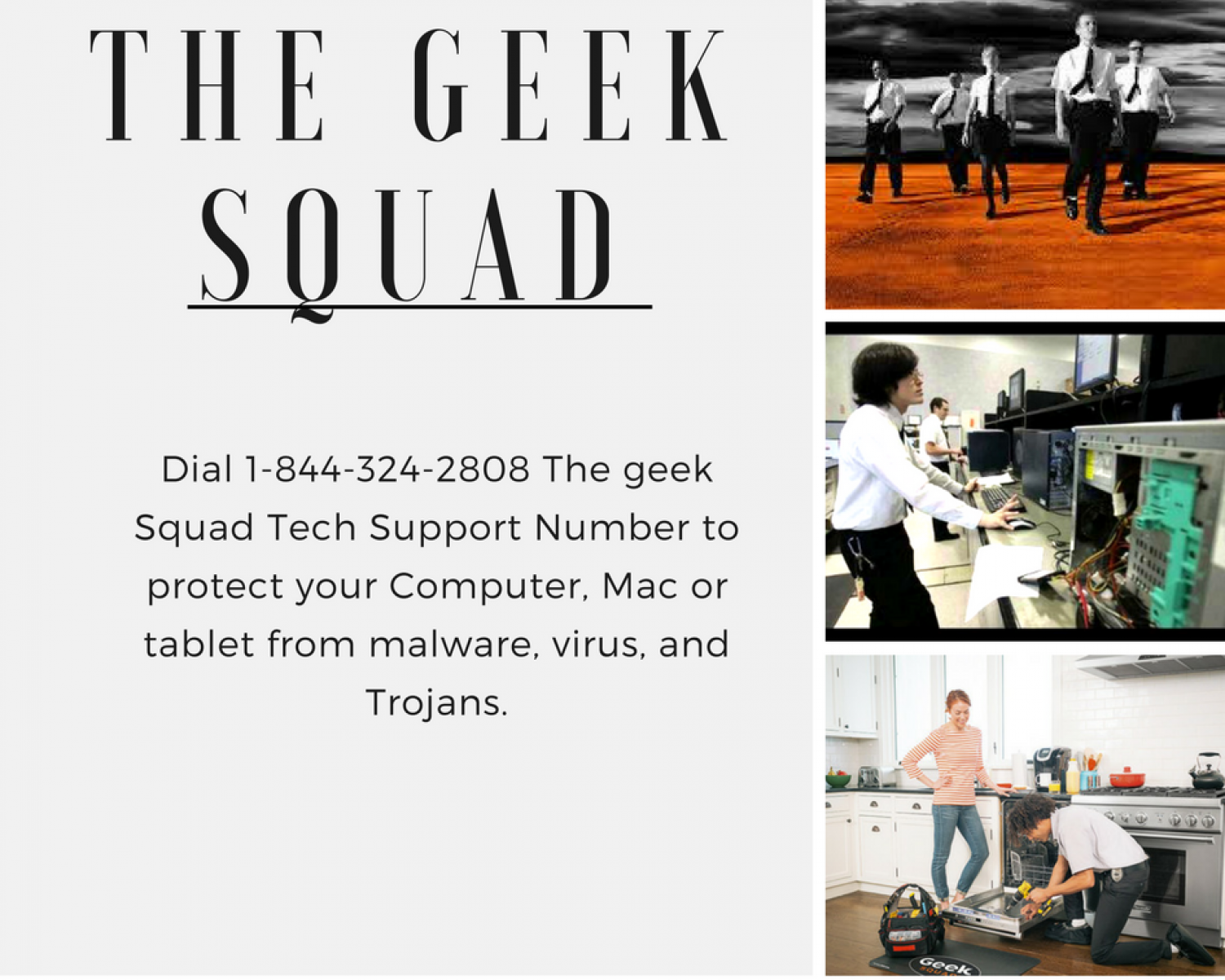 The Geek Squad Tech Support 1-844-324-2808  Number Infographic