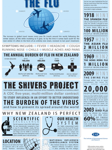The Global Impact of The Flu Infographic