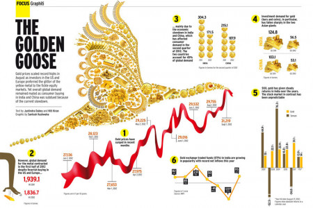 THE GOLDEN GOOSE Infographic