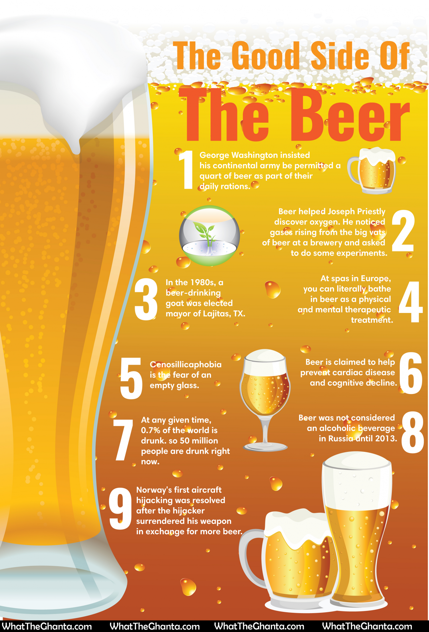 The Good Side Of Beer Infographic