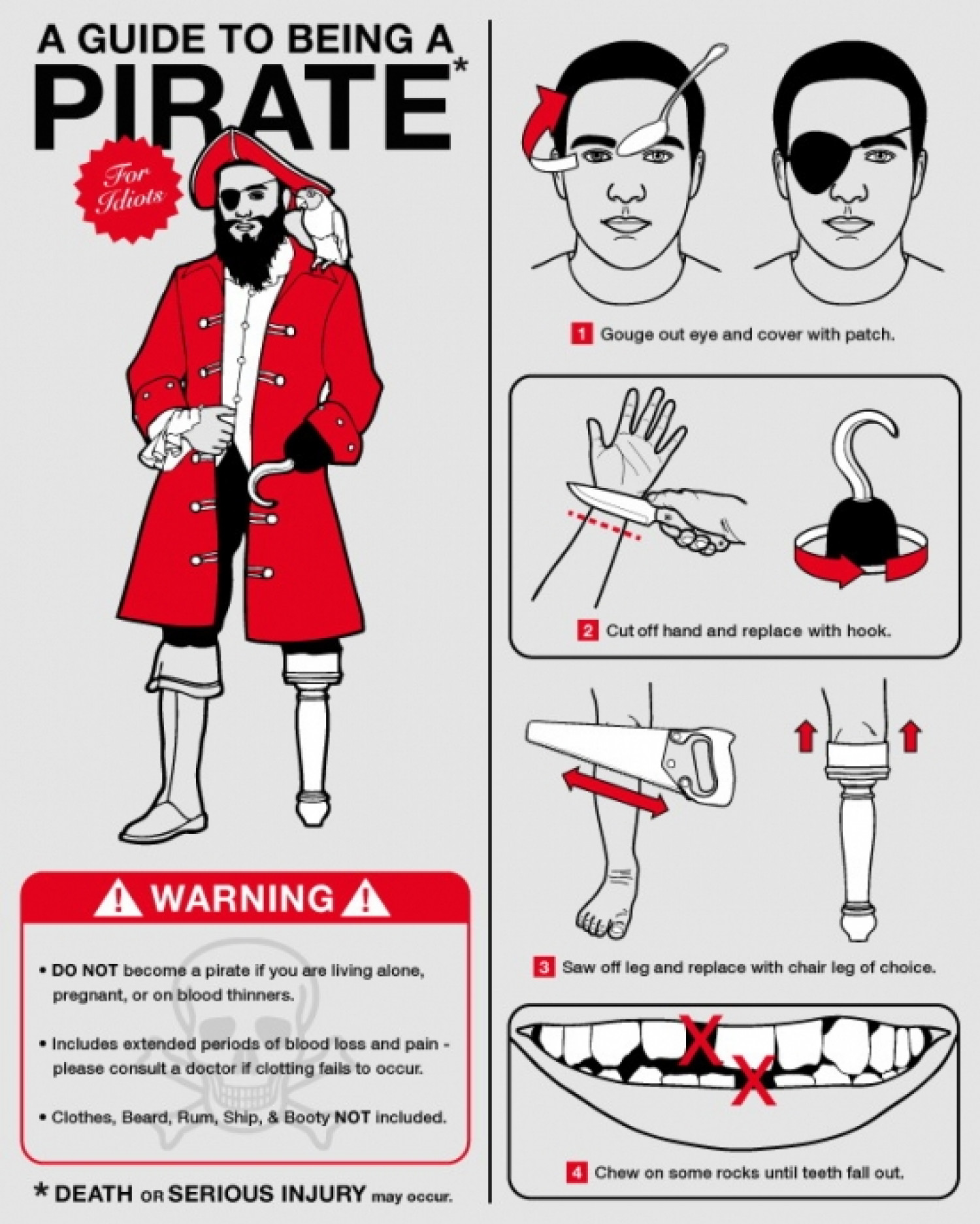 The Guide to Being a Pirate Infographic