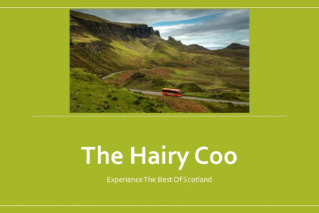 The Hairy Coo Scotland Tours Infographic