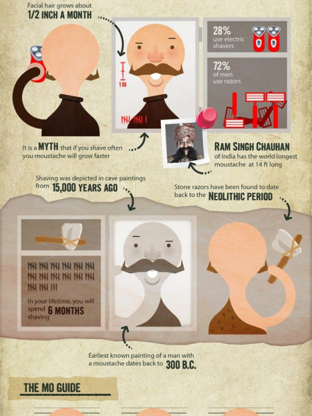 The Hairy Truth About The Moustache  Infographic