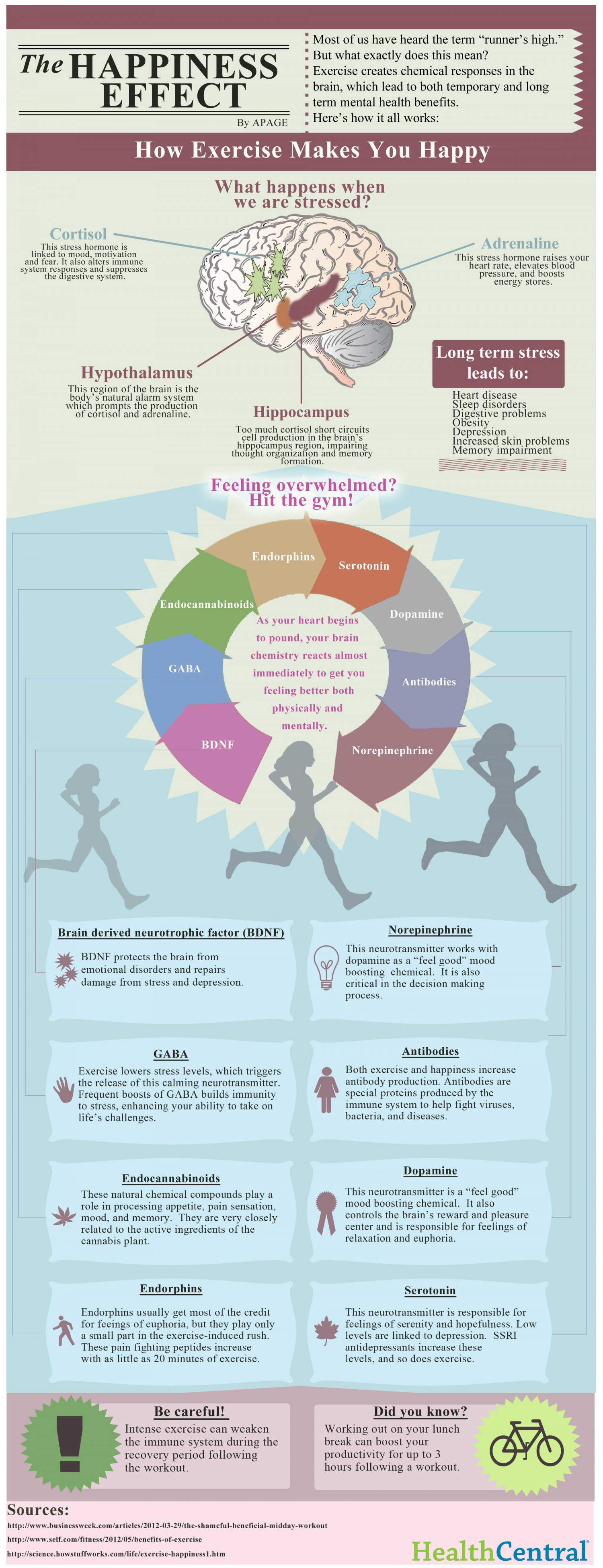 The Happiness Effect: How Exercise Makes You Happy Infographic