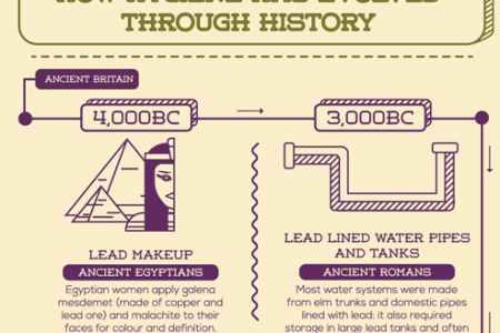 The History of Hygiene Infographic