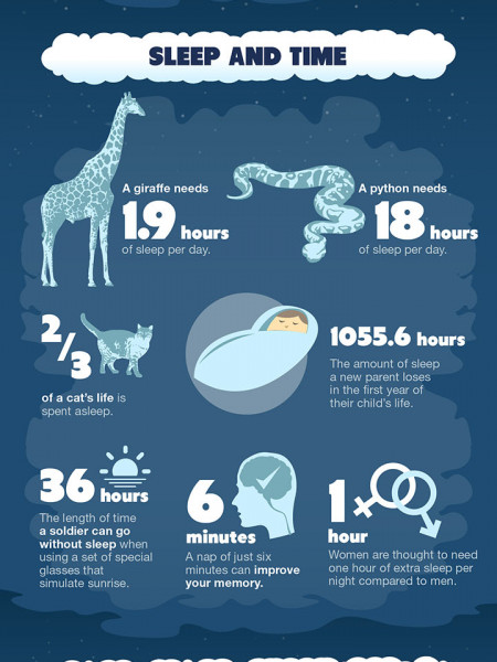 30 Insane Facts About Sleep Infographic