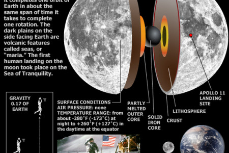 The Earth's Moon Infographic