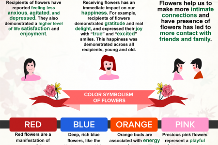 The Language Of Flowers Infographic