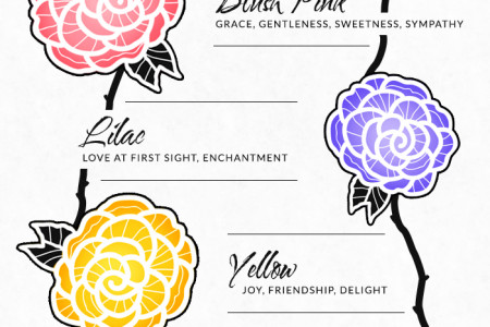 The Language of Roses Infographic