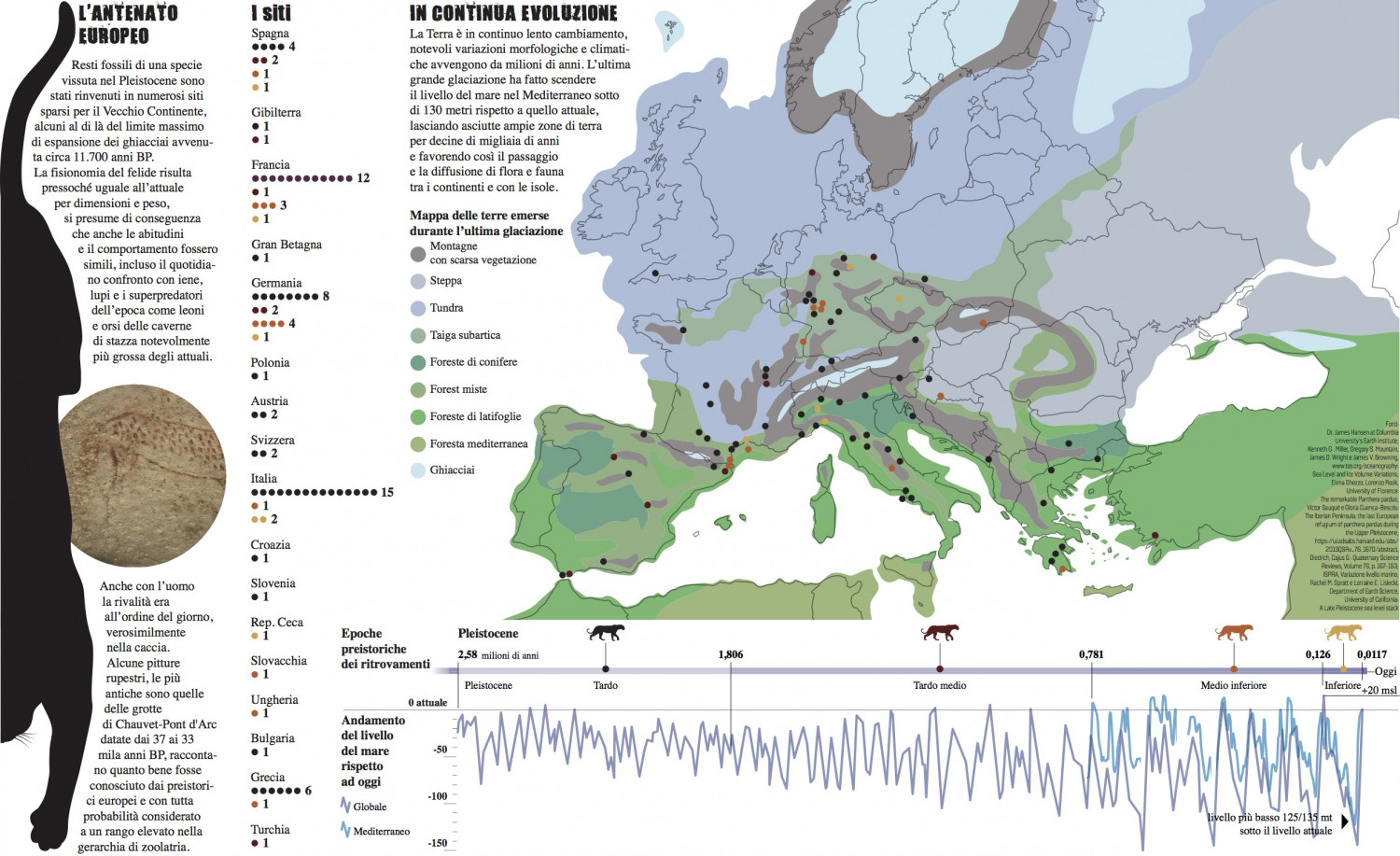 The leopard in Europe Infographic