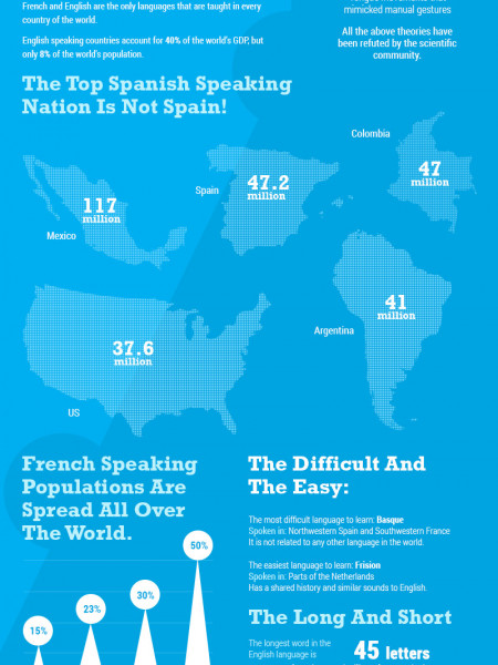 The Lingo of Language Infographic