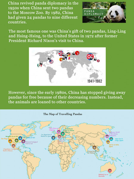 The Map of Traveling Pandas Infographic
