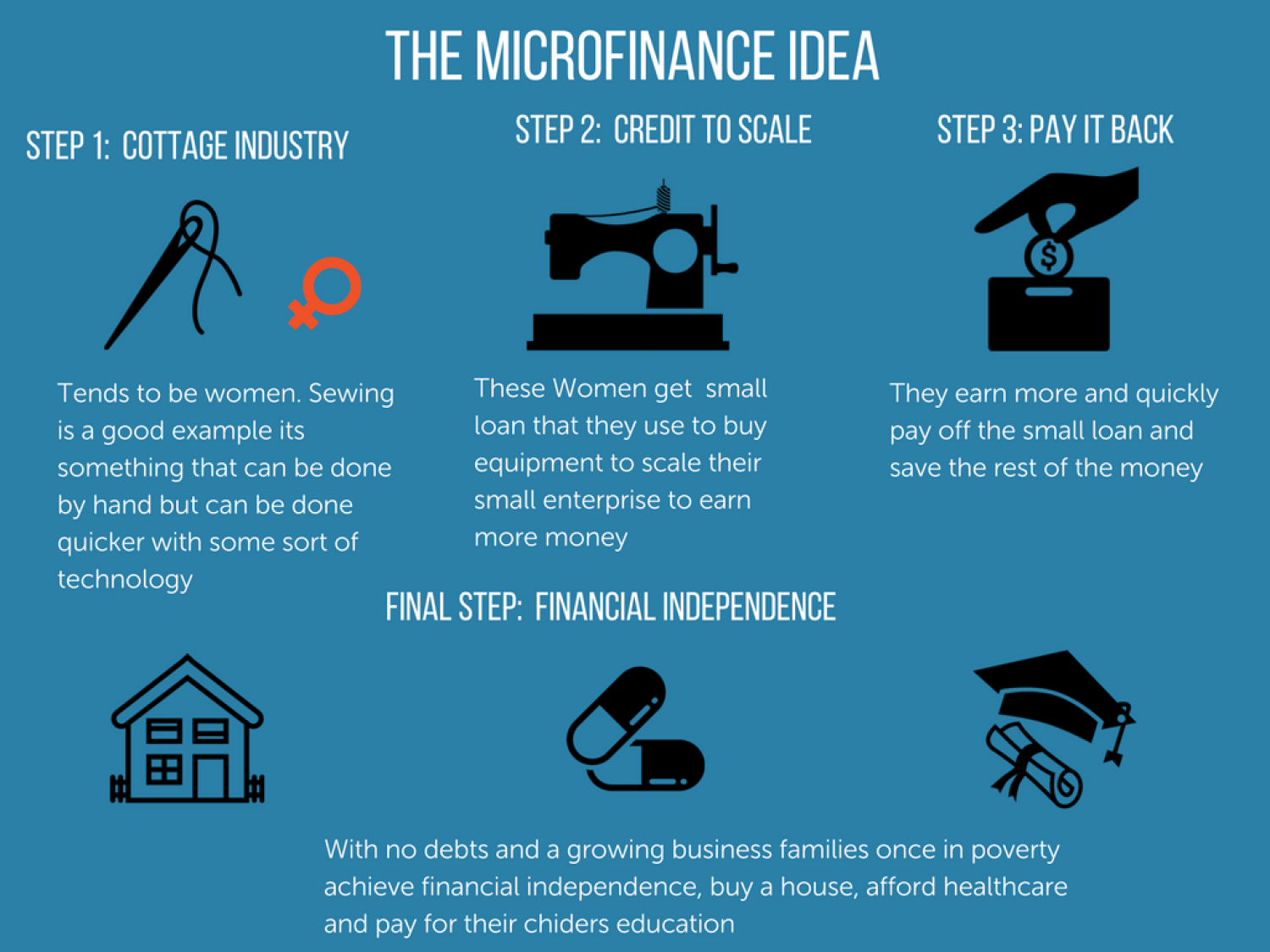 The Microfinance Idea Infographic