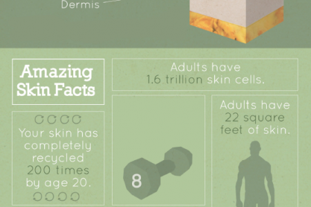 The Modern Fountain of Youth: Unlocking the Real Secrets of Anti-Aging Skincare Infographic