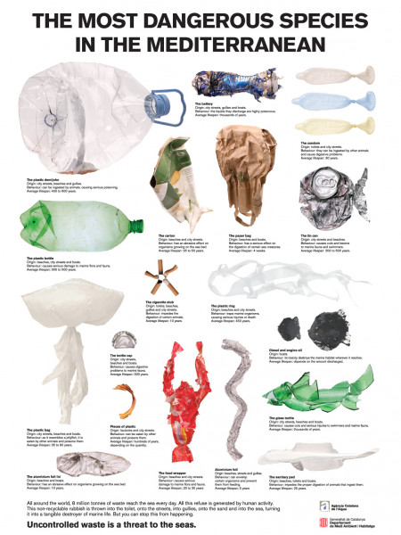 The Most Dangerous Species in the Mediterranean Infographic