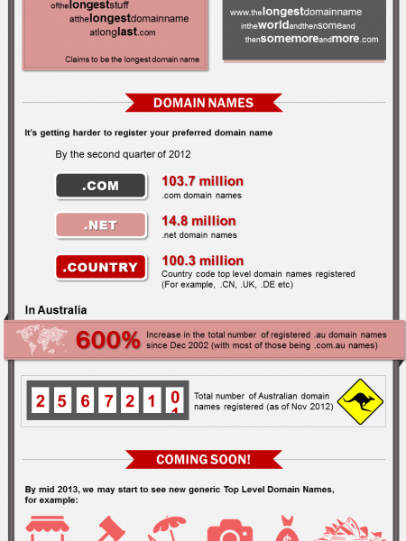 The Next Step in Domain Names Infographic