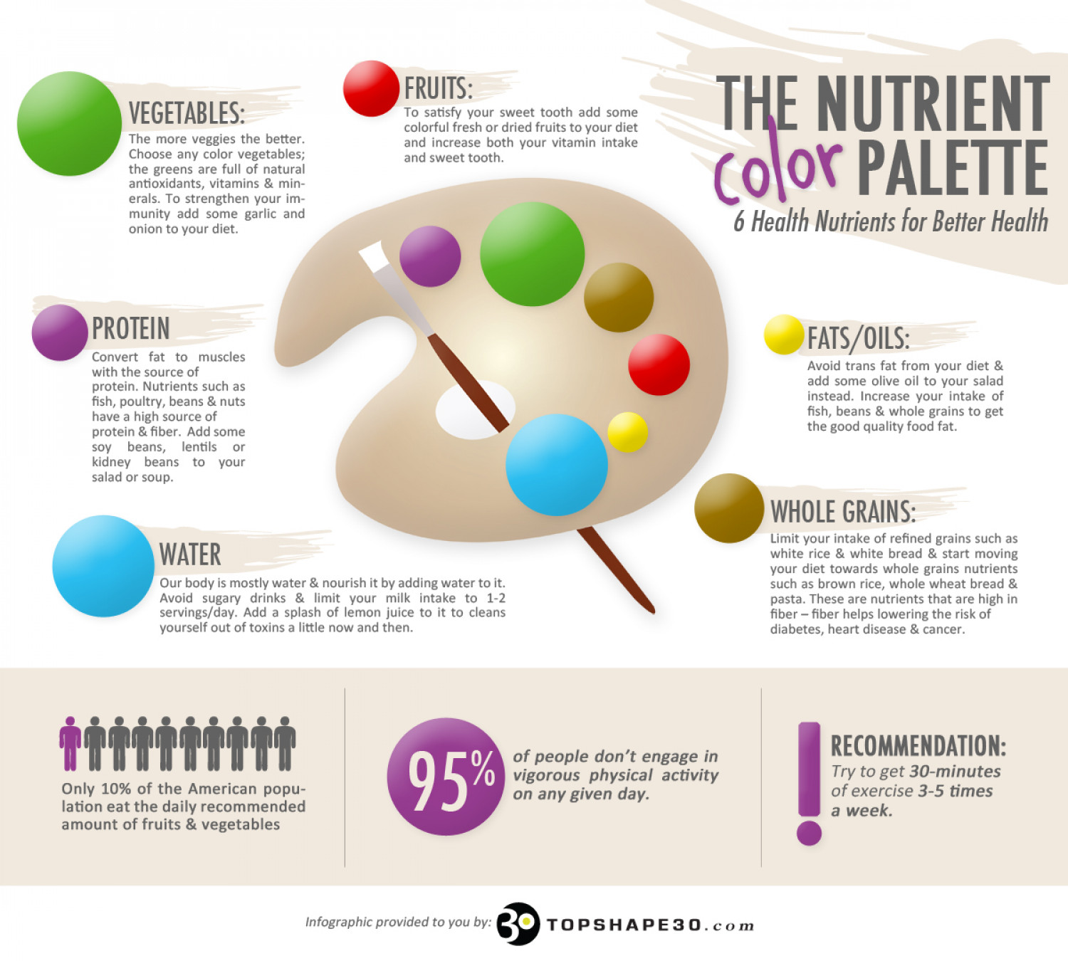 The Nutrient Color Palette  Infographic
