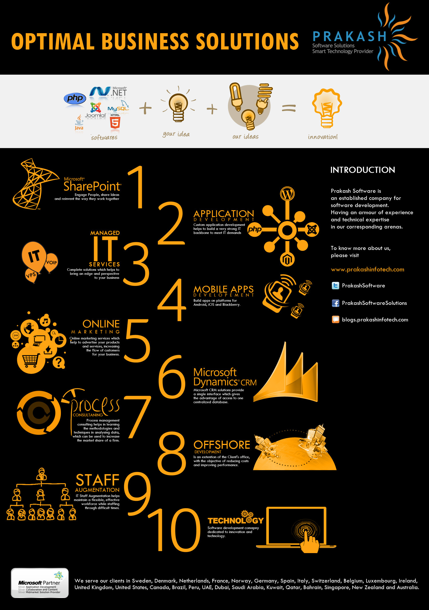 The Optimal Business Solutions Infographic