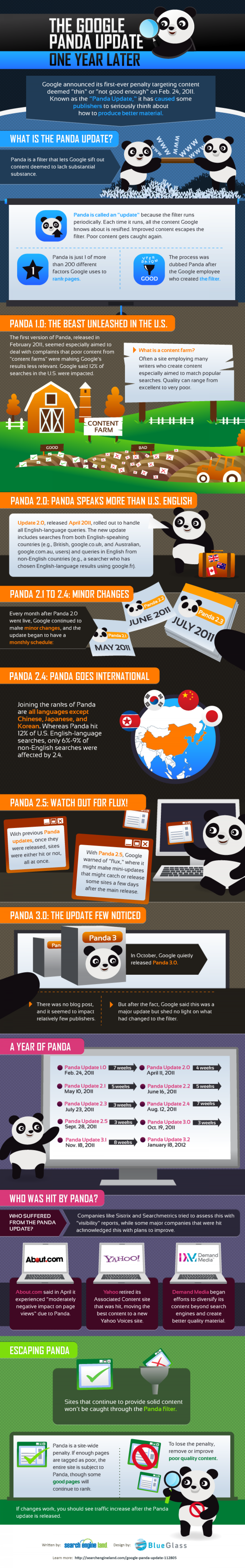 The Panda Update: One Year Later Infographic