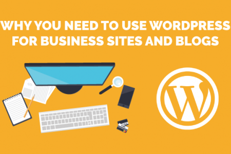 The Power of WordPress by Medialinkers Infographic